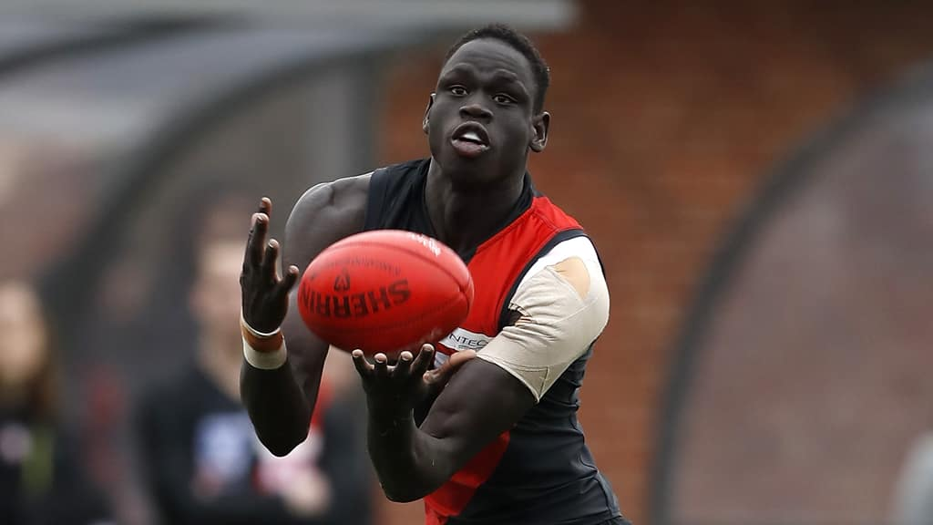 VFL player review: Preliminary final