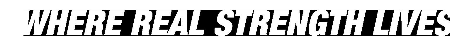 Western Bulldogs Header Branding