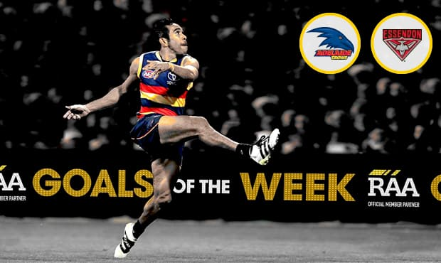 Adelaide Crows on Twitter: We followed @dgore10 in action