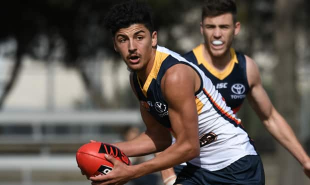 Matthew Signorello in action for the SANFL Crows