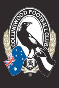 The Collingwood Football Club has announced a net operating profit of $5.225 million and a net profit of $16.375million for the financial year ending October 31, 2013.