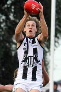 Chris Mayne has been named in an extended VFL squad for Sunday's match. Photo: Shane Barrie.