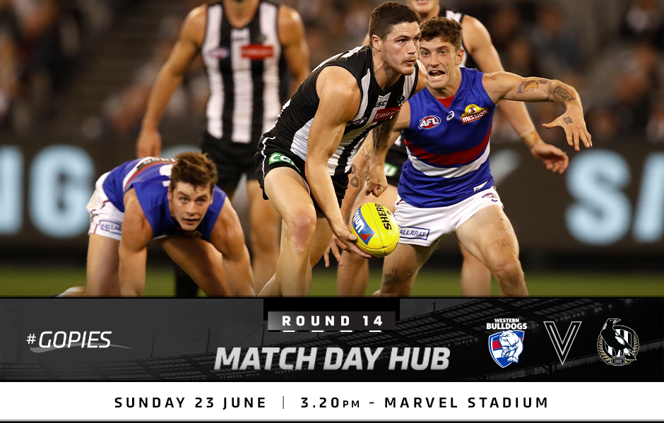 Match Day Hub: Round 14 v Bulldogs
