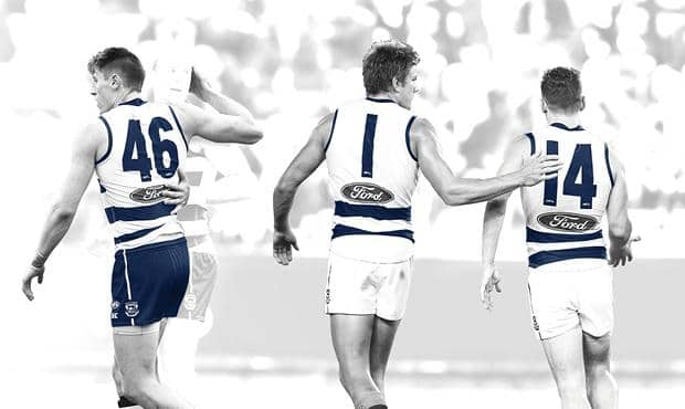 Cats membership total has overtaken their all-time record