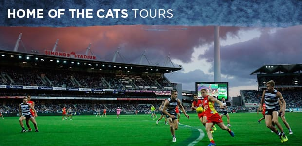 home of the cats tours 2017.jpg