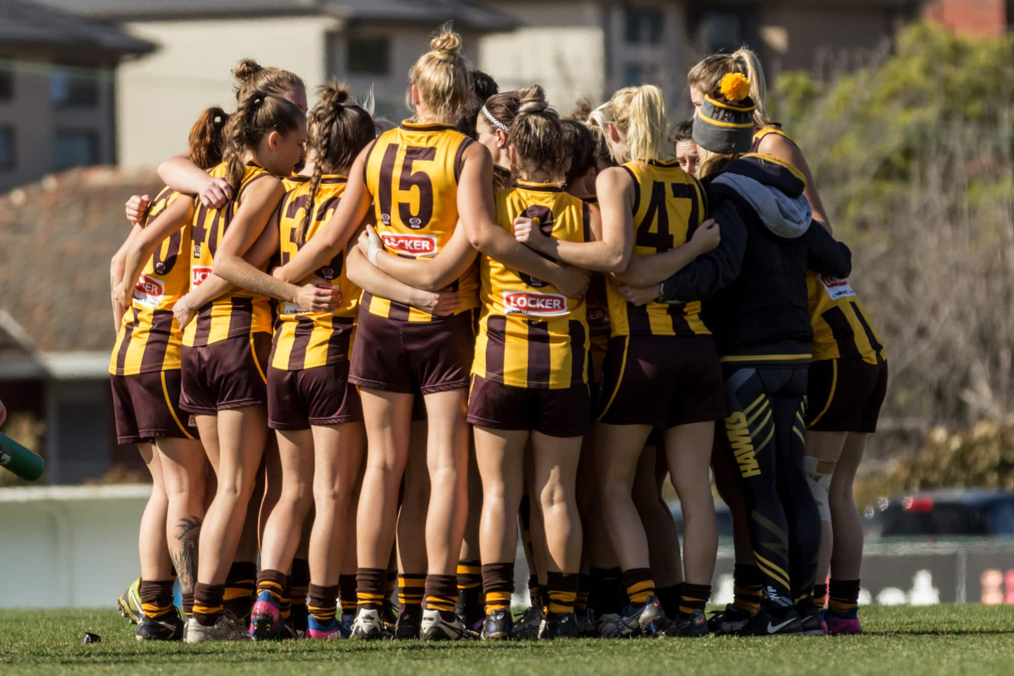 Box Hill's VFLW team are currently recruiting.