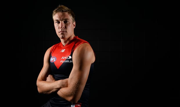 AFL 2015 Portraits - Melbourne Demons