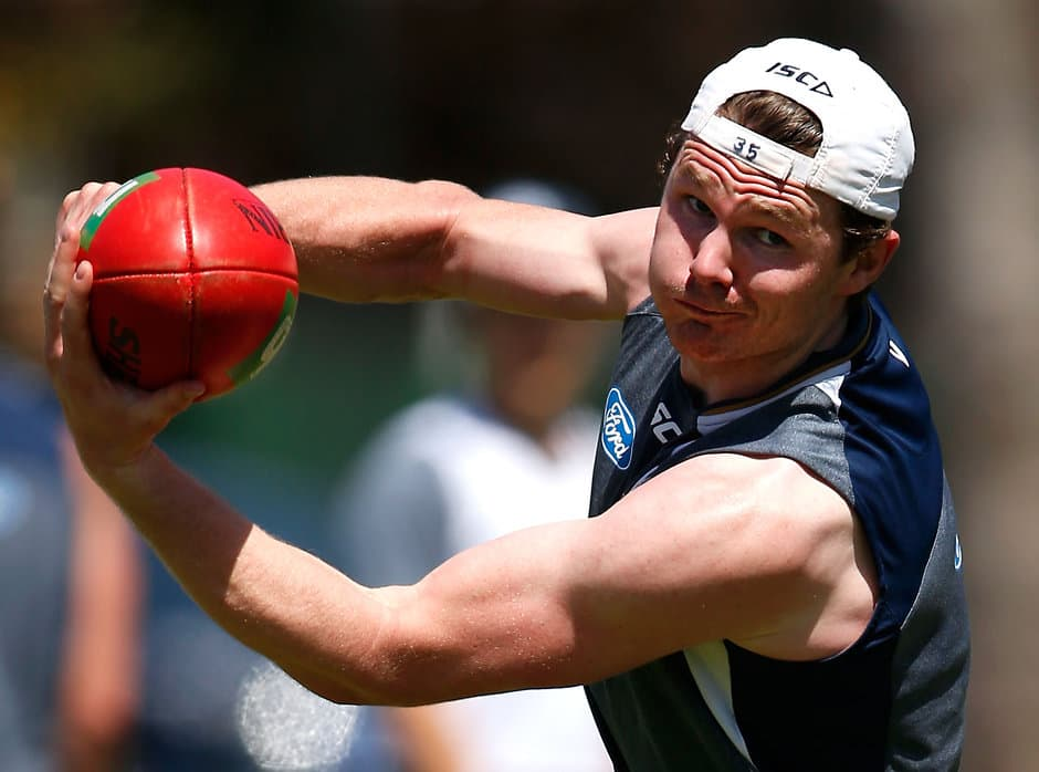 Ex-Crow Patrick Dangerfield has quickly developed into a trusty leader at Geelong - ${keywords}