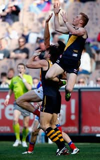 Nick Vlastuin flies high but can't pull down the mark during the Tigers' win over the Lions