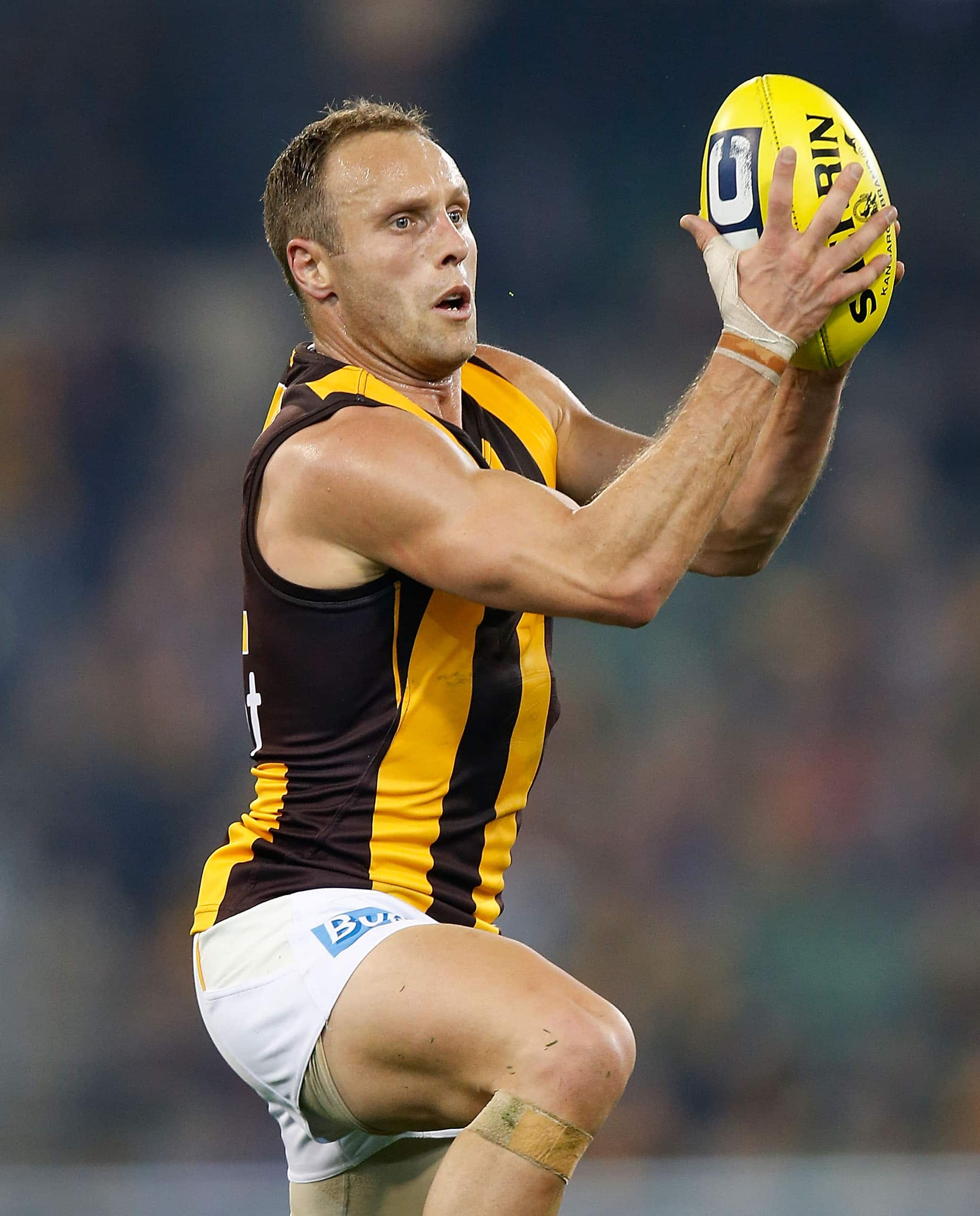 No Sewell In VFL Grand Final