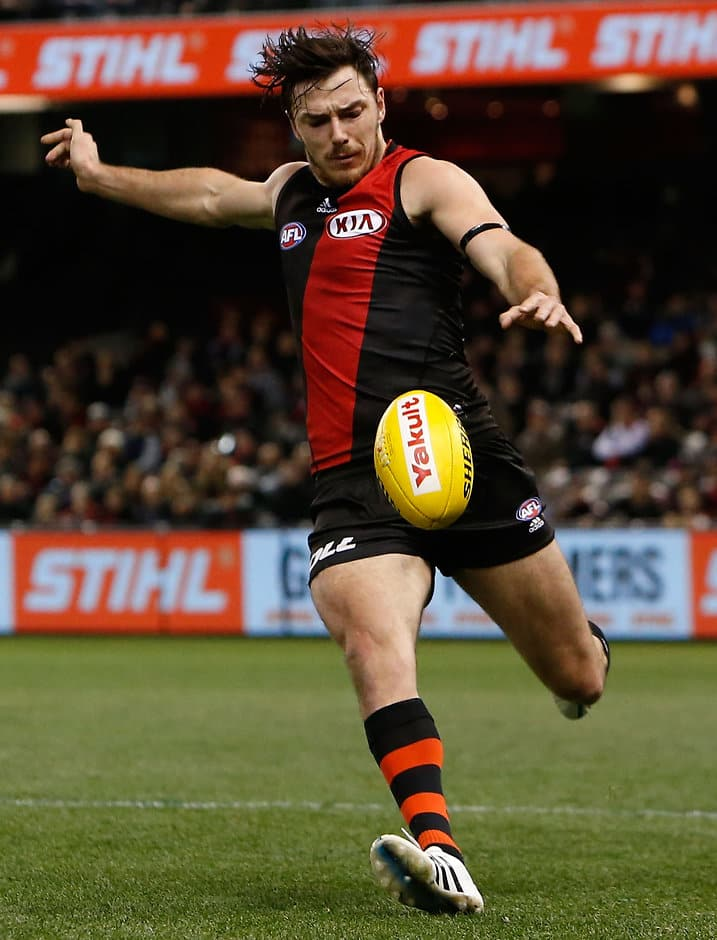 Michael Hibberd is set to wait until later this year to decide if he will return to Essendon - ${keywords}