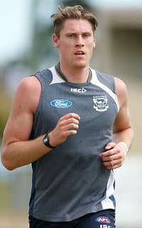 AFL 2015 Training - Geelong 231115