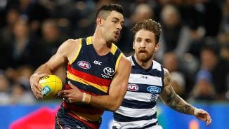 Clash of the titans: Crows v Cats