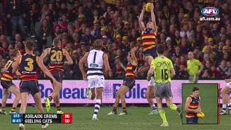 Crow catches a ripper