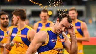 Hurn and Neale share the spoils
