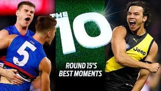 Dogs make The 10 (Rd15)