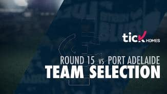 Team Selection | Round 15