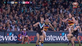 Classy Crows perfect run of play