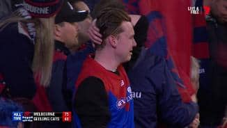 Tears of joy for this Dees fan