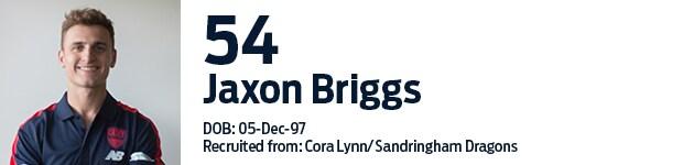 54_Briggs.png