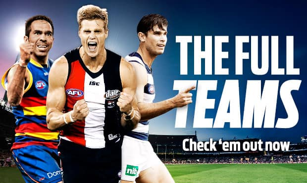 the history of the afl