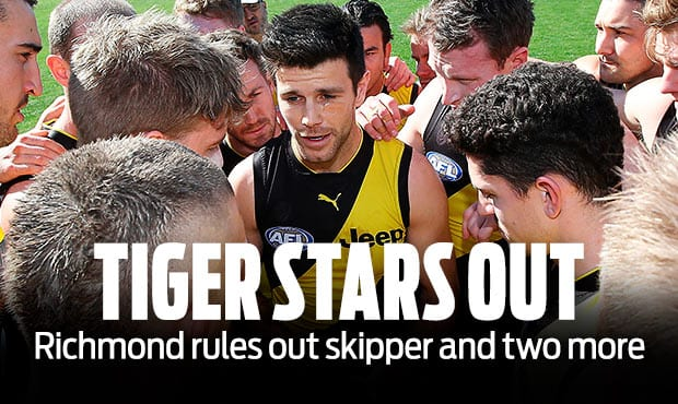 Tiger-Stars-Out-AFL.jpg