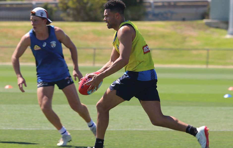 Johannisen was injured in a tackle during Friday morning's training session. - Western Bulldogs