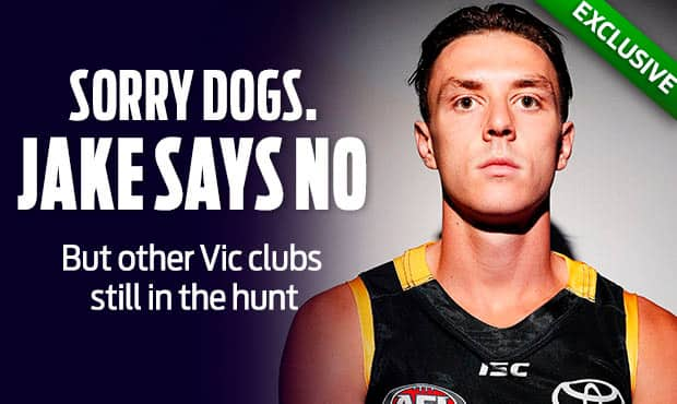 sorry-dogs-jake-says-no-afl.jpg