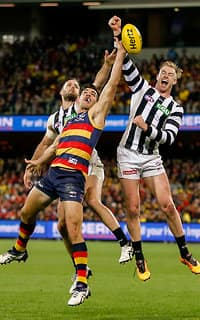 The new Crows app will feature lots of exclusive game stats this season
