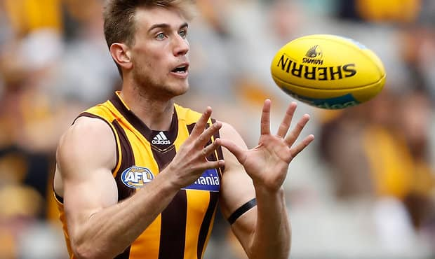 enemy c in the mix for hawthorn the cattery