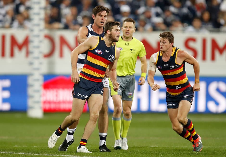 GEELONG, AUSTRALIA - JUNE 02: Tom Hawkins of the Cats wrestles with Matt Crouch (right) and Brad Crouch of the Crows (left) during the 2017 AFL round 11 match between the Geelong Cats and the Adelaide Crows at Simonds Stadium on June 02, 2017 in Geelong, Australia. (Photo by Michael Willson/AFL Media)