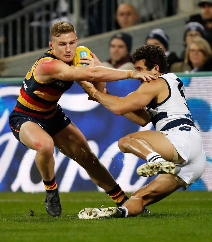 GEELONG, AUSTRALIA - JUNE 02: Rory Laird of the Crows fends off Nakia Cockatoo of the Cats during the 2017 AFL round 11 match between the Geelong Cats and the Adelaide Crows at Simonds Stadium on June 02, 2017 in Geelong, Australia. (Photo by Michael Willson/AFL Media)