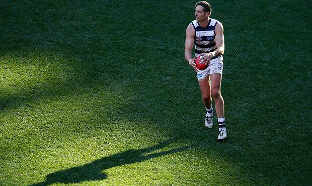 Harry Taylor has largely avoided serious injury thus far in his career. - Geelong Cats
