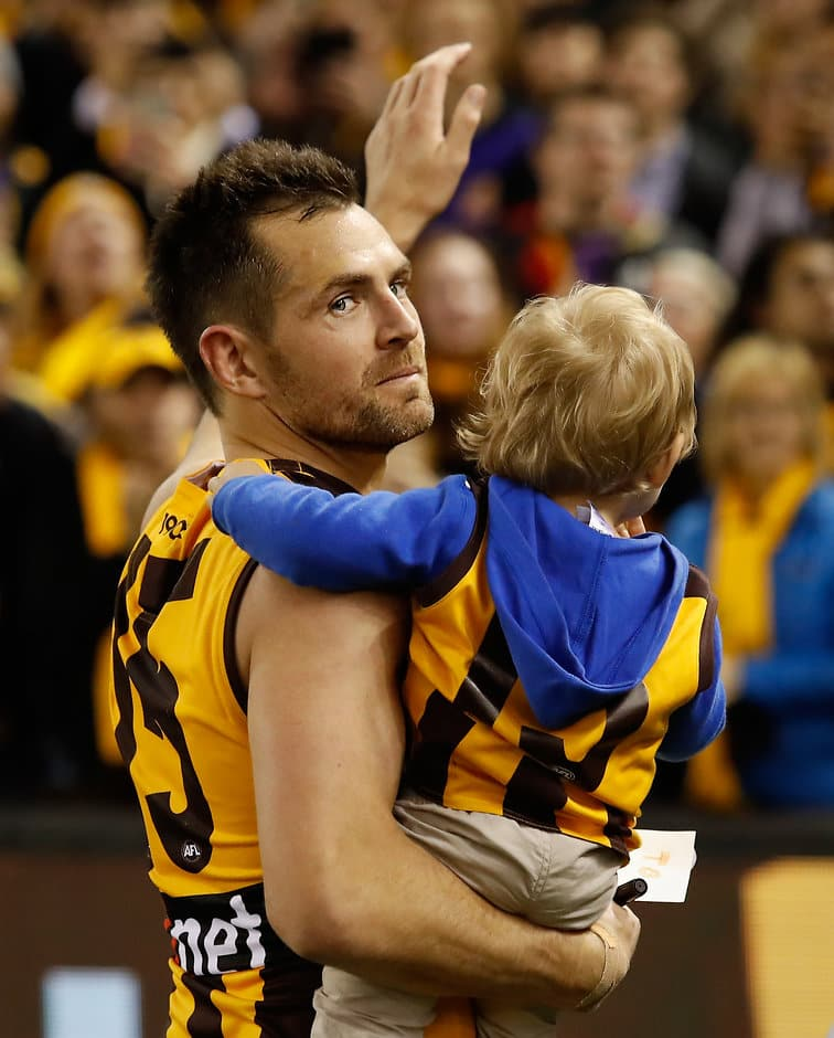 Luke Hodge has farewelled the Hawks for a stint at the Lions - AFL,Trade,Hawthorn Hawks,Brisbane Lions,Luke Hodge