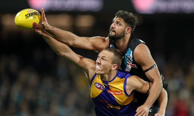 ADELAIDE, AUSTRALIA - SEPTEMBER 09: Drew Petrie of the Eagles clashes with Paddy Ryder of the Power during the 2017 AFL First Elimination Final match between the Port Adelaide Power and the West Coast Eagles at the Adelaide Oval on September 09, 2017 in Adelaide, Australia. (Photo by AFL Media)
