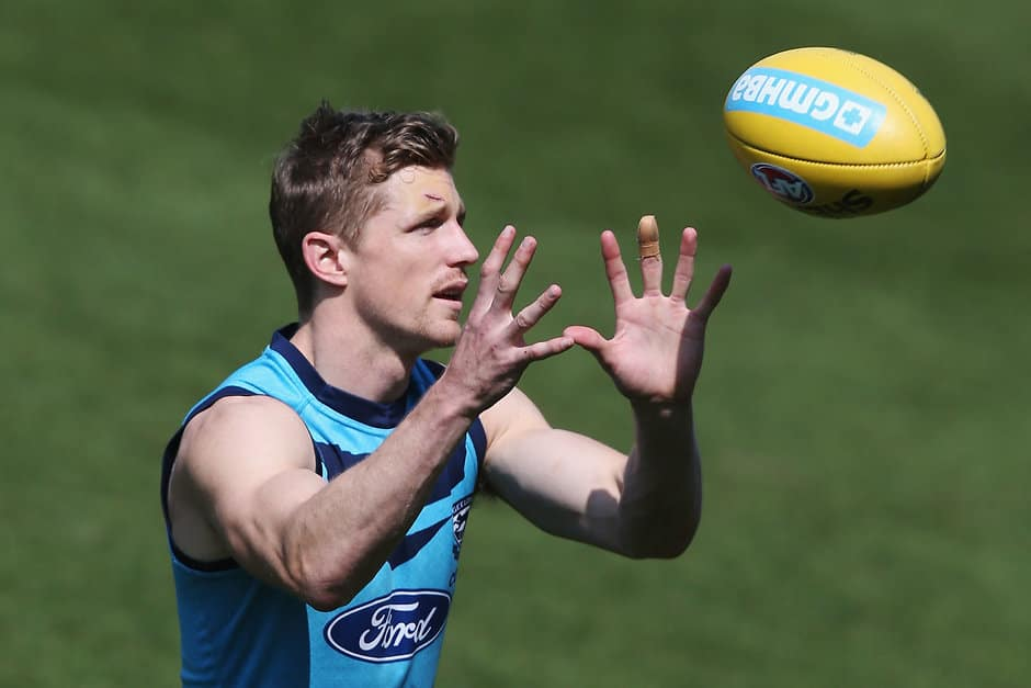 Scott Selwood could miss the start of the AFL season - AFL,Geelong Cats,Scott Selwood,Injuries,Fantasy