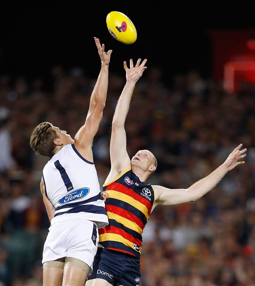 Rhys Stanley will be looking continue his recent strong form - Geelong Cats