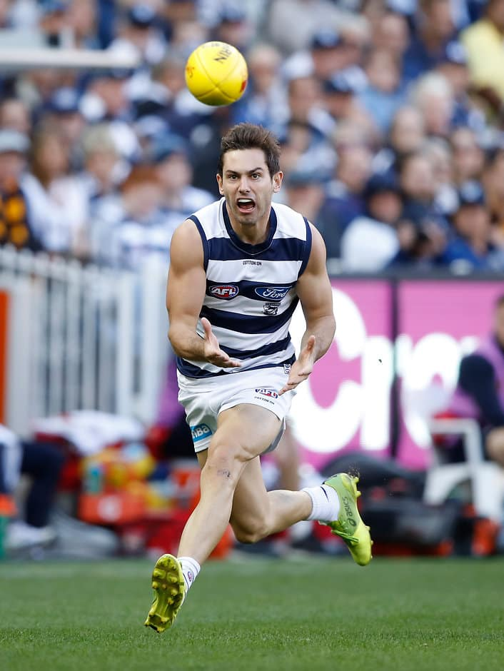 Daniel Menzel kicked four goals the last time the two sides met in round two this year - Geelong Cats