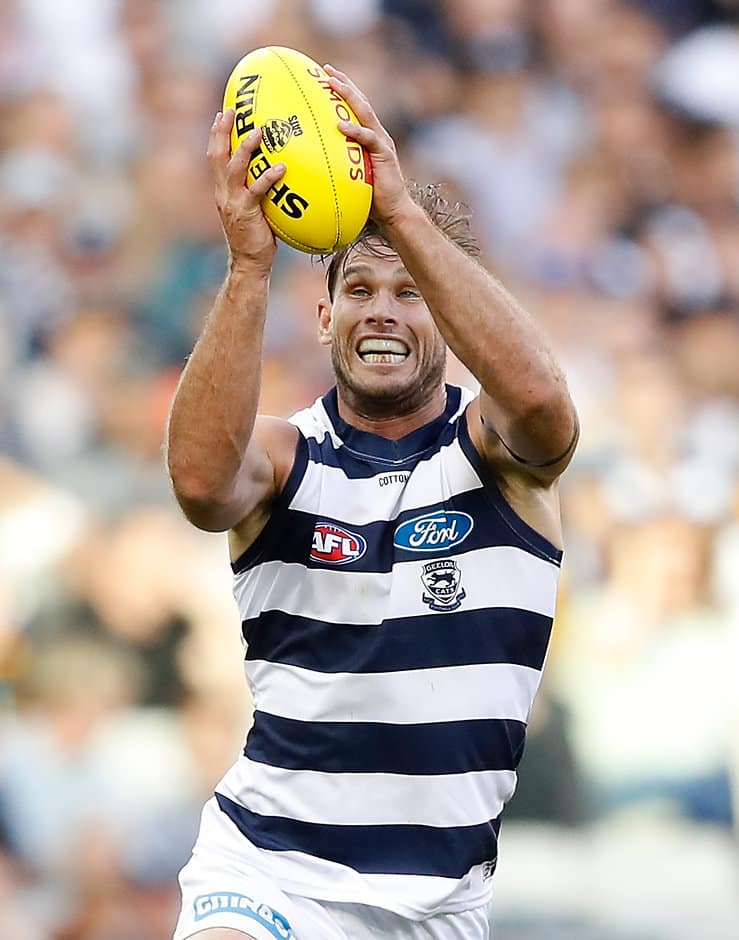 After consecutive bags of seven goals, Tom Hawkins managed just one against the Tigers last Friday - Geelong Cats