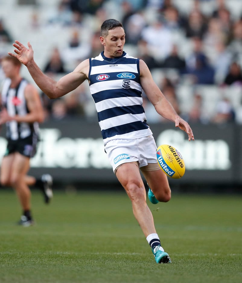 Harry Taylor played his first game since round one - AFL,Chris Scott,Geelong Cats