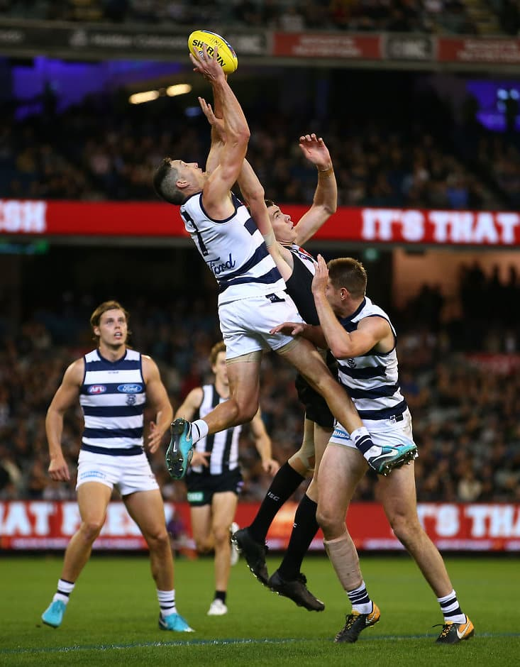 Harry Taylor collected 20 disposals and took six marks in his comeback game. - Geelong Cats,Harry Taylor