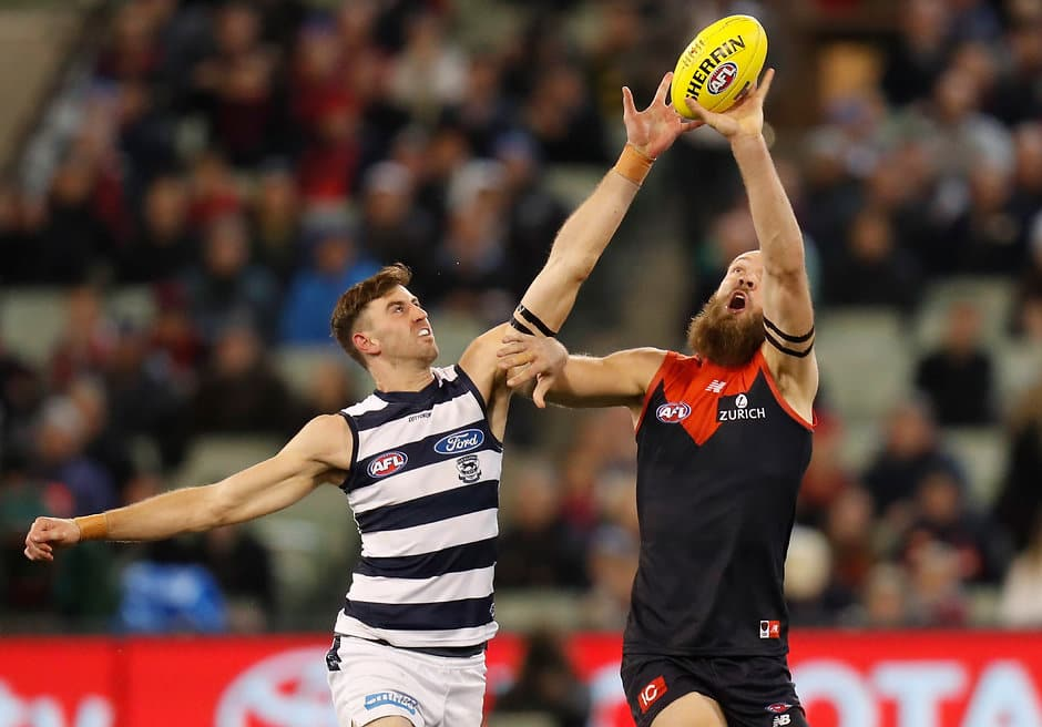 Ryan Abbott played four AFL games in his first year at the Cats. - Geelong Cats,Ryan Abbott