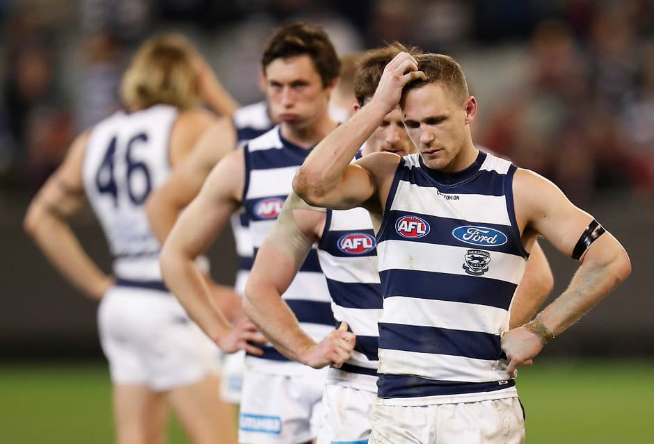 Joel Selwood scratches his head after last year's elimination final shocker - AFL,Geelong Cats,Chris Scott,Tag-Opinion