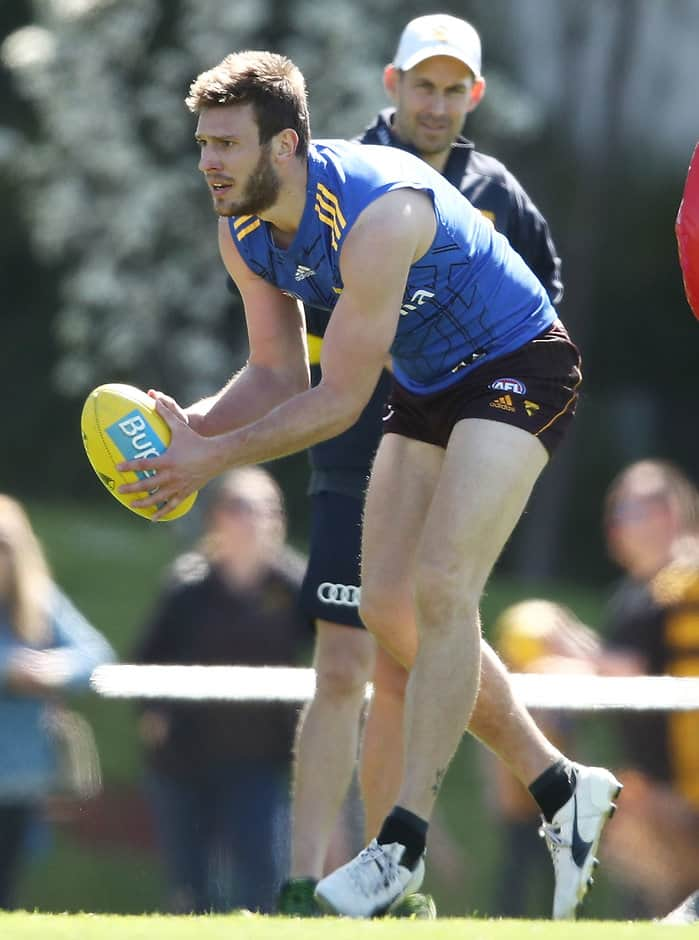 Grant Birchall will play in the VFL on Sunday - AFL,Hawthorn Hawks,Melbourne Demons,Grant Birchall,Bernie Vince