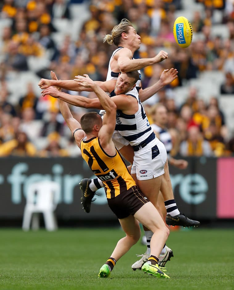 MELBOURNE, AUSTRALIA - APRIL 22: Paul Puopolo of the Hawks compete for the ball against Mark Blicavs and Sam Menegola of the Cats (right) during the 2019 AFL round 05 match between the Hawthorn Hawks and the Geelong Cats at the Melbourne Cricket Ground on April 22, 2019 in Melbourne, Australia. (Photo by Michael Willson/AFL Photos)