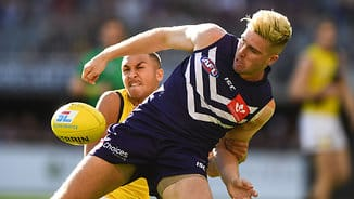 Wounded Tigers still prove too strong for Freo